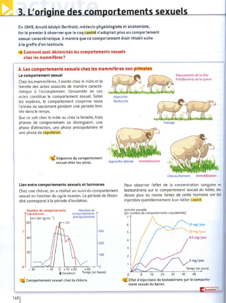 fig. 2 : Hachette : Immobilisation de la femelle….chez le mammifère non primate ?